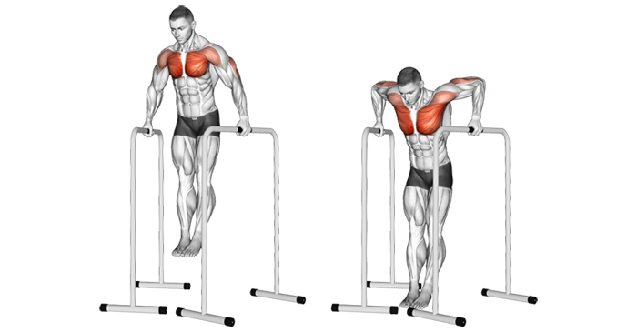 Gironda Dips (wide grip or V-bar dips)