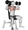 The Dumbbell Overhead Press: Pro Technique Tips On The Number One Shoulder Exercise