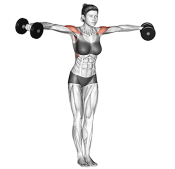 Image result for Lateral Raises