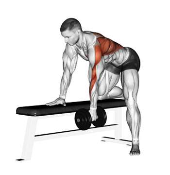 The One Arm Dumbbell Row A Simple And Effective Upper
