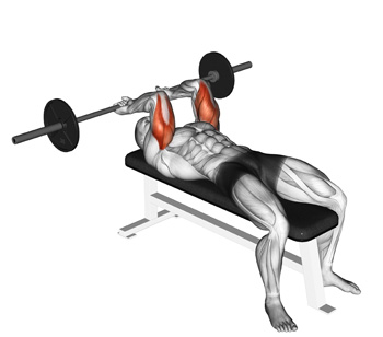 Barbell Lying Tricep Extensions: Build Amazing Triceps With The ...