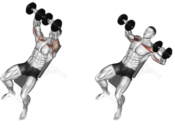 target your upper pecs with incline dumbbell bench presses