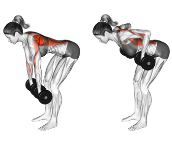 Image result for Two-Armed Bent Over Row""