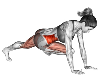 The Cross Body Knee To Elbow Plank