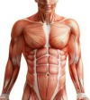 "How To Get Your Abs To ""POP"" Out: The Real Secrets To Exposing Your Six Pack"