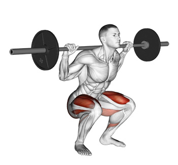 Barbell Squats - The King of Leg Exercises