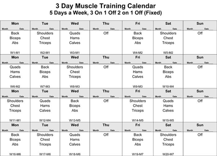 3-Day Muscle: Push, Pull, Legs Hypertrophy Training (V 1 0)