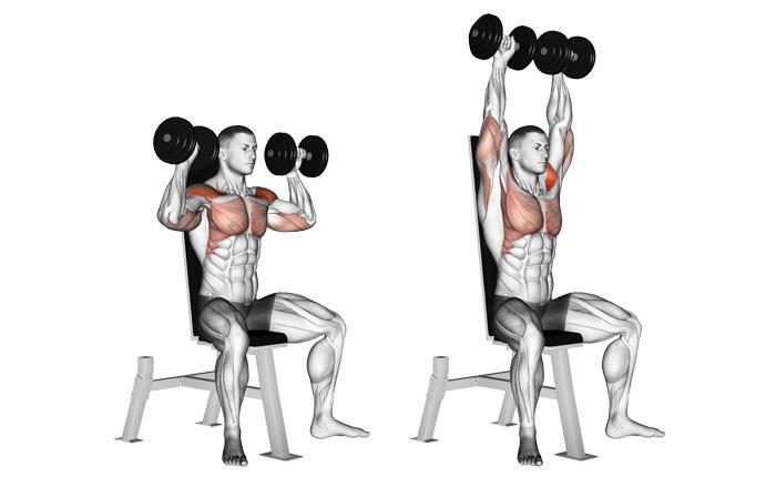sspBody fitness1: 5 days/ Week – SSPJSSM
