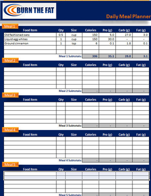 burn the fat daily meal planner spreadsheet downloads