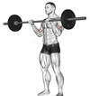 "Reverse Barbell Curls: The ""Other Curl"" Most People Aren't Doing, But Should"
