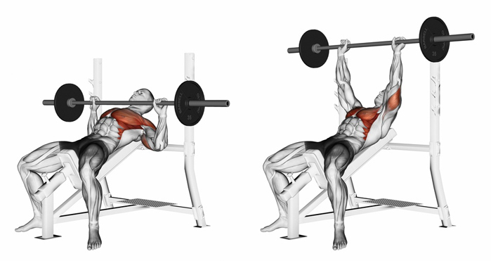 Incline Bench Press How To Fully Develop Your Upper Chest Without