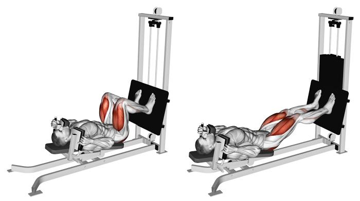 Gymmangesh Leg press