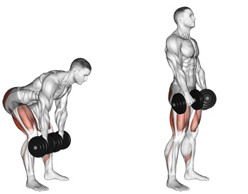 """Dumbbell Romanian Deadlifts - The """"Other"""" Way To Train Your Hamstrings,  Without A Leg Curl Machine"""