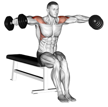 Seated Dumbbell Lateral Raises: The Long-Lost Gironda Variation Of ...