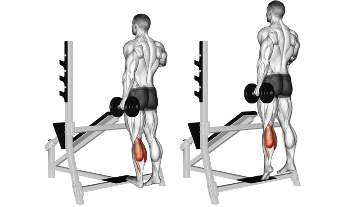 One Leg Dumbbell Standing Calf Raise The Simplest Calf Exercise You
