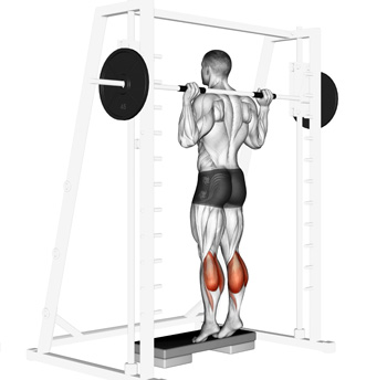 Image result for smith machine calf raises