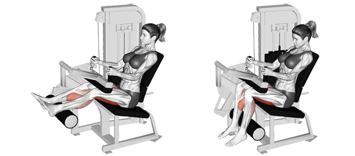 Train Your Hams From A Different Angle With Seated Leg Curls