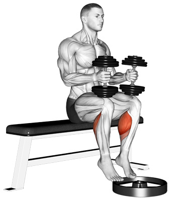 Seated Dumbbell Calf Raise: Another Way To Train Calves At Home Without Machines